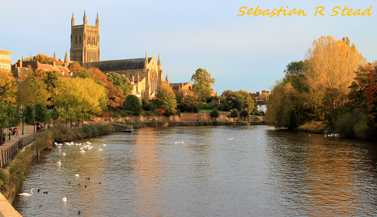 Worcester Cathedral - Autumn