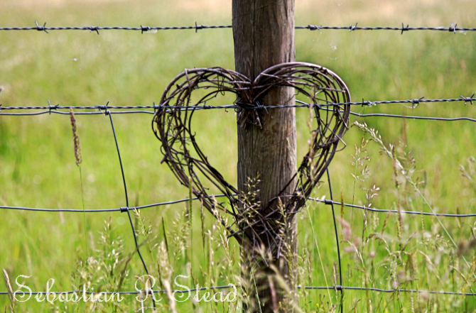 Countryside Heart